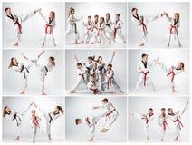 Le studio a tiré du groupe d'enfants formant des arts martiaux de karaté image stock