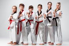 Le studio a tiré du groupe d'enfants formant des arts martiaux de karaté photographie stock