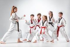 Le studio a tiré du groupe d'enfants formant des arts martiaux de karaté photo stock