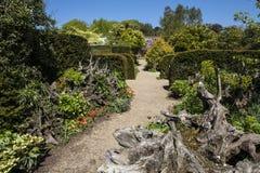 Le Stumpery au château d'Arundel dans le Sussex photos stock