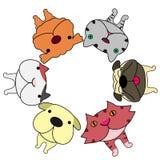 Le style de lentille de Fisheye poursuit des chats de fand ace en cercle Images stock