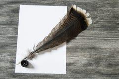 Le stylo et le papier nostalgiques de plume d'oiseau Photographie stock