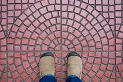 Le suède de Brown chausse la position sur le plancher carrelé rouge image libre de droits