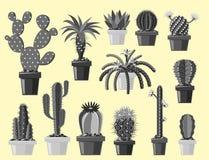 Le succulent mexicain graphique et la plante tropicale de style de cactus de nature de désert de fleur de dessin monochrome plat  Photo stock