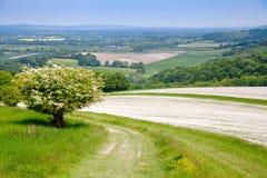 Le sud avale la traînée nationale de manière dans le Sussex Angleterre du sud R-U images stock