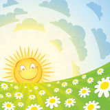 Le sun och chamomile vektor illustrationer