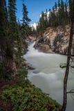 Le Sunwapta Falls inférieur Photo stock
