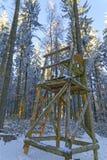 Le support de chasseurs dans une neige a couvert la forêt photo stock