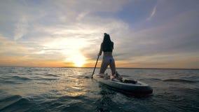 Le surfer féminin monte un paddleboard dans un océan ouvert le soir 4K clips vidéos