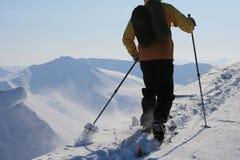 Le Svalbard Norvège Image stock