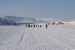 Le Svalbard Norvegia Immagini Stock