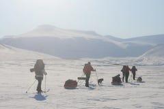 Le Svalbard Norvegia Immagine Stock Libera da Diritti