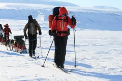 Le Svalbard Norvegia Fotografia Stock Libera da Diritti