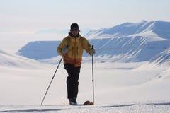 Le Svalbard Norvegia Fotografia Stock