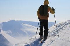 Le Svalbard Norvegia Fotografie Stock Libere da Diritti