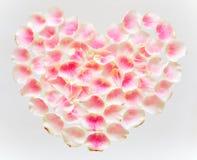 Le symbole de l'amour est le coeur, garni des pétales de rose tendres Photos libres de droits