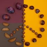 Le symbole de paix des écrous et de l'automne porte des fruits sur le fond de fente Image libre de droits