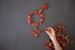 Le symbole femelle de genre est égal au concept masculin de l'égalité entre les sexes fait avec des fraises Photo stock