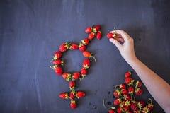 Le symbole femelle de genre est égal au concept masculin de l'égalité entre les sexes fait avec des fraises Image libre de droits