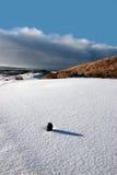 Le té de golf vert sur la neige a couvert le terrain de golf image stock