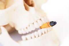 Le tabagisme des mises à mort, cessent le tabagisme Photo stock