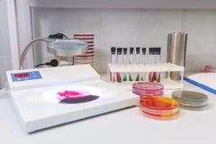 Le Tableau dans le laboratoire, plan rapproché, roule Pétri Photo stock