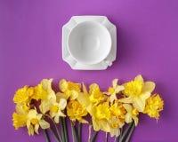 Le Tableau a placé avec les fleurs propres de tasse et de narcisse de thé Images libres de droits