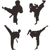 Le Taekwondo Shillouette Photo stock