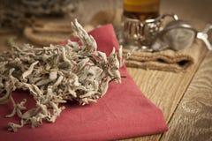 Le tantuni de boeuf de viande est un genre de kebap turc traditionnel Photographie stock libre de droits