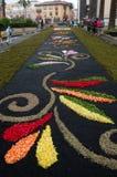 Le tapis des fleurs La Orotava Ténérife Images libres de droits