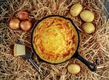 Le tarte de purée de pommes de terre a fait cuire au four dans la casserole rustique aux oignons et au parmesan sur la paille Images libres de droits
