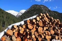 le tas de bois avec de grands rondins a coupé par des enregistreurs dans les montagnes Images stock