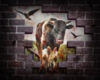 Le taureau ensanglanté avec des corneilles a frappé un mur de briques type Photographie stock libre de droits