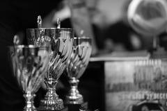 Le tazze dei vincitori Immagini Stock