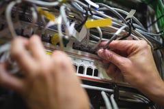 Le technicien branchant le câble de correction dans un support a monté le serveur Image libre de droits