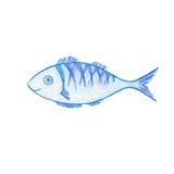 Le teckningen för fiskvattenfärgblyertspennor royaltyfri illustrationer