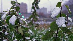 Le temps anormal est neige humide au-dessus de la route urbaine clips vidéos