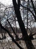 Le temps de famille de rivière ou de lac est roman inestimable à l'it& x27 ; s meilleur avant la voie de tempête à la paix du sud image stock