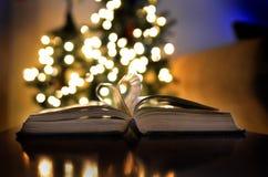 Le temps de Noël allume la lecture et l'étude d'amour de livre Images stock