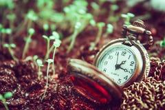 Le temps s'écoule Images libres de droits