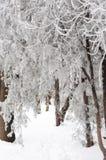 Le temps se tient toujours - congelé à temps Photo libre de droits
