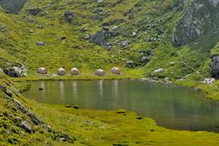Le tende alpine di campeggio si avvicinano al lago Immagini Stock Libere da Diritti