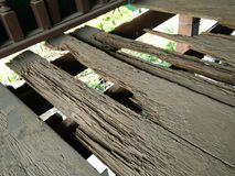 Le termite mangent le bois Images libres de droits