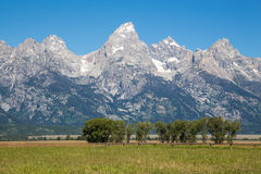 le teton panoramique Etats-Unis de stationnement de national grand visualisent le Wyoming Photo libre de droits