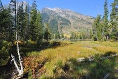Le Tetons en automne Images stock