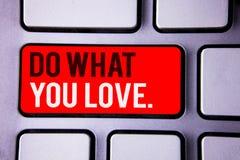 Le texte d'écriture de Word font ce que vous aimez Concept d'affaires pour le texte blanc bien choisi positif deux de Desire Happ Photographie stock