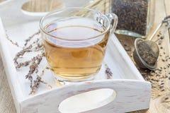 Le thé de fines herbes sain de lavande dans la tasse en verre avec la lavande fleurit sur le fond, horizontal Images libres de droits