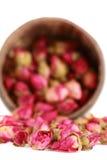 Le thé de l'thé-s'est levé des bourgeons. Image stock