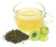 Le thé vert de fines herbes dans une tasse avec l'amla porte des fruits Images stock