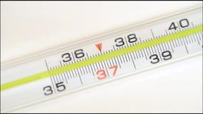 Le thermomètre mercuriel en verre prend la température clips vidéos
